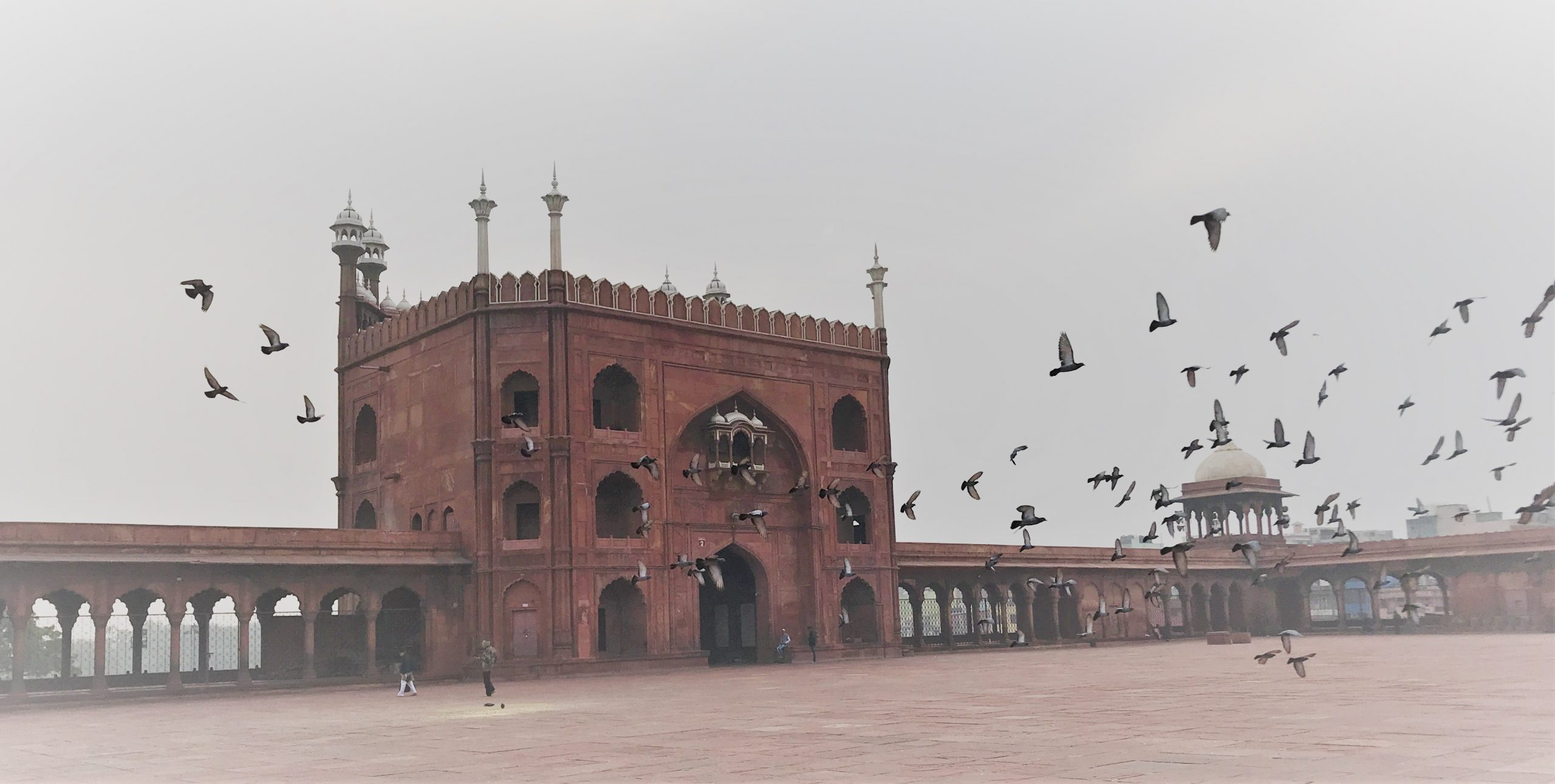 Jama Masjid (Friday Mosque) in Delhi, India. One of the top sights in Delhi.